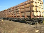 Ищем поставщика столярного леса   в Шымкенте (4 вагона в месяц)