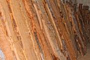Необрезная доска твердолиственных пород, массив капа карагача, слэбы